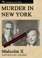 Murder in New York : Malcolm X And The Birth Of Afro-Americanism