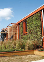 Green Architecture: Environmentally Friendly Housing